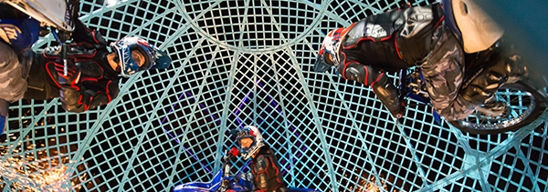 CirqueBerserk-600x211.jpg