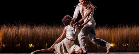 Acosta Danza - Faun 434x170.jpg